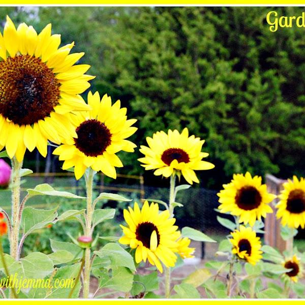 Garden Party #2