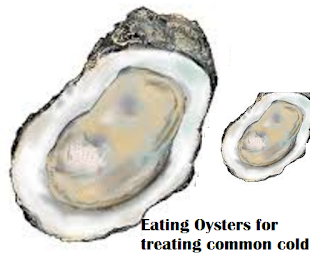 Eating Oysters for treating common cold
