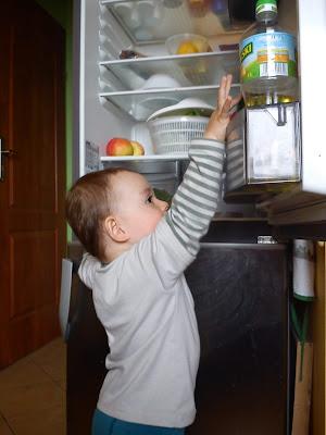 dziecko i lodówka