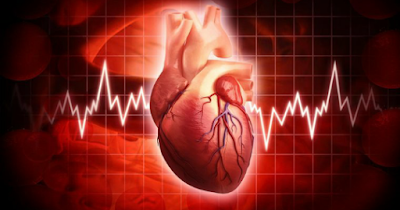 what is heart rate normal 2019