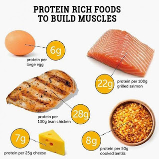 muscle building diet tips