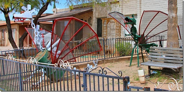 Tucson Daily Photo ~: There goes the neighborhood!