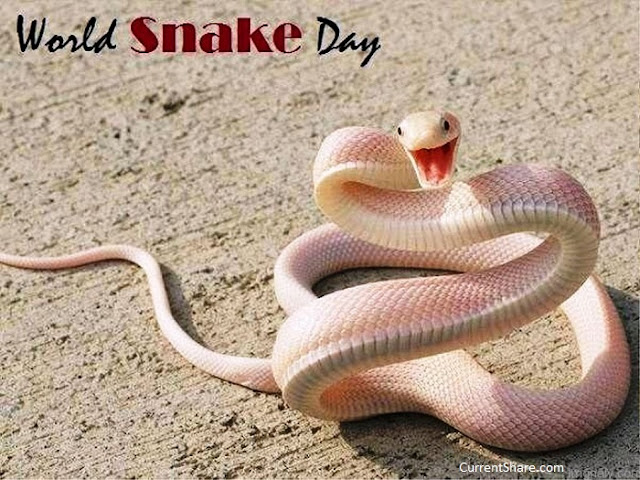 when is national snake day