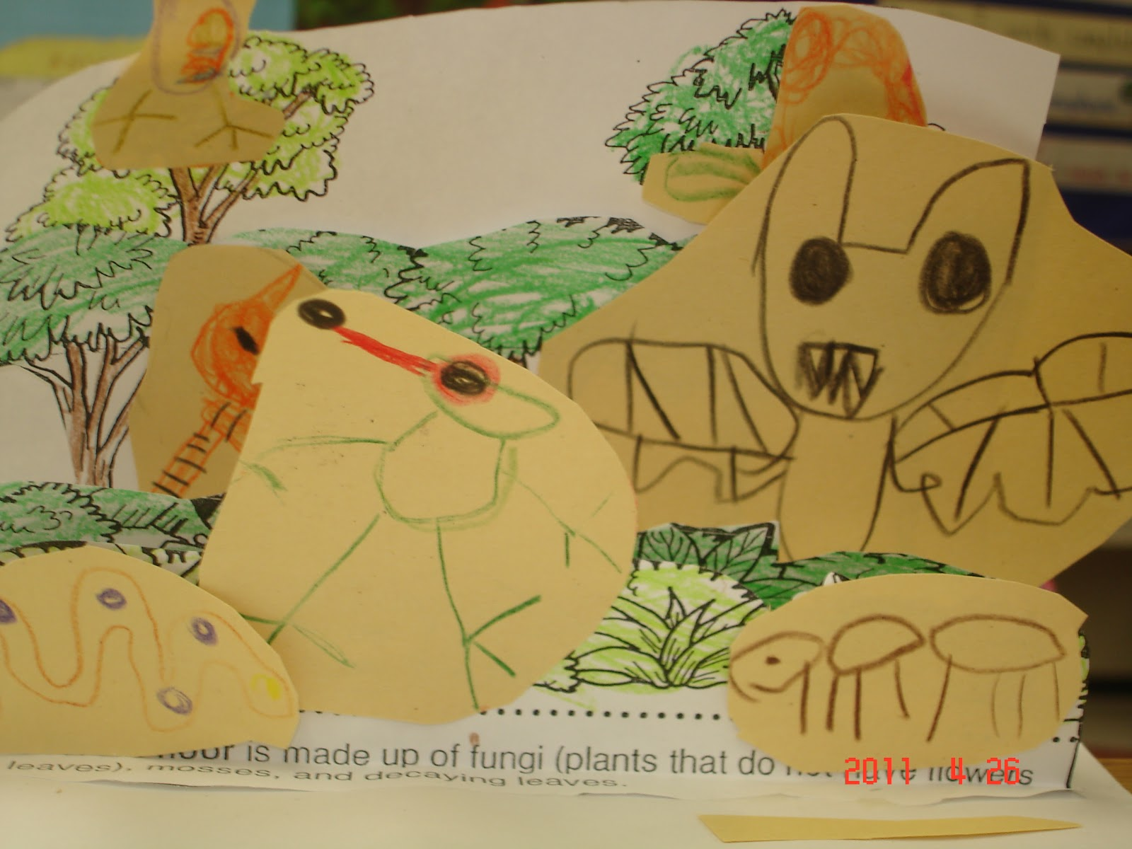 Endangered Rainforest Animals For Your Kids To Know