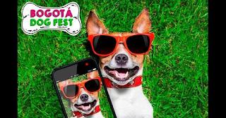 BOGOTA DOG FEST 2017 2