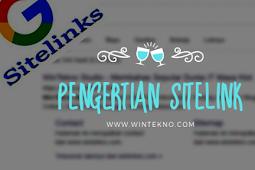 Pengertian Sitelink, Apa Fungsinya Dan Bagaimana Cara Mendapatkan?