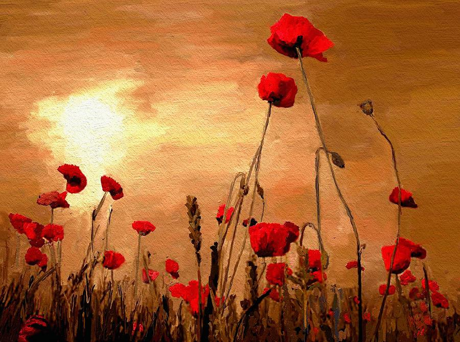 sylvia plath poppies in july essay Comparison of two poppy poems by sylvia plath essay when looking at the titles of the two poems poppies  i automatically think of the war.