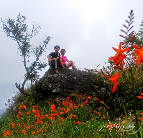 Mother and son hiker at Mt. Ugo hover_share
