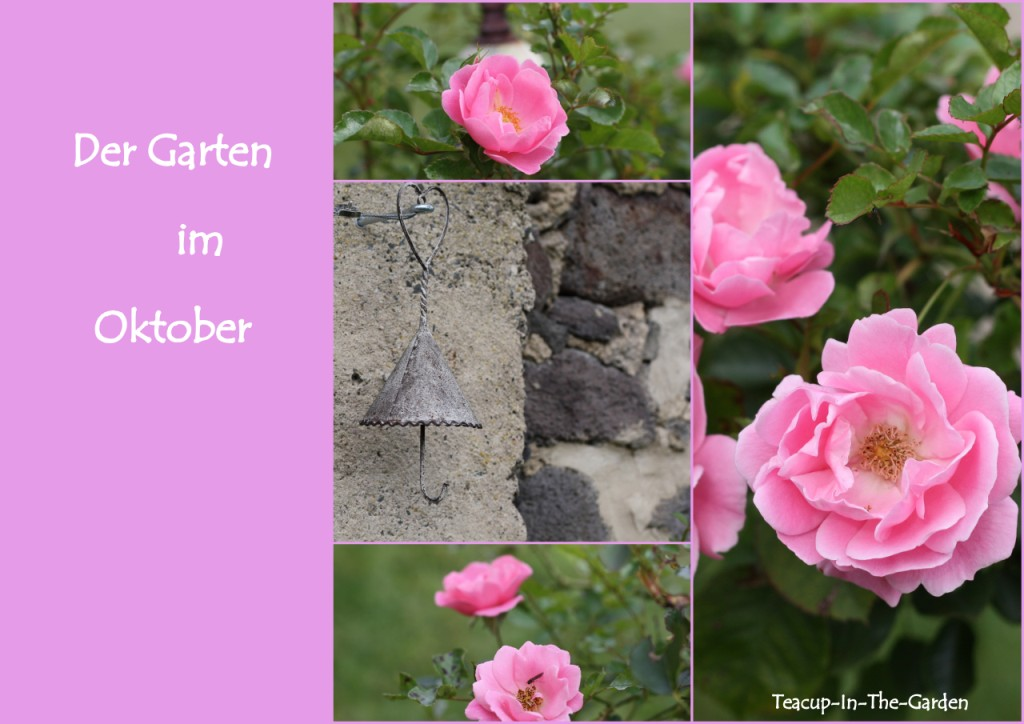 was der garten macht im oktober teacup in the garden. Black Bedroom Furniture Sets. Home Design Ideas