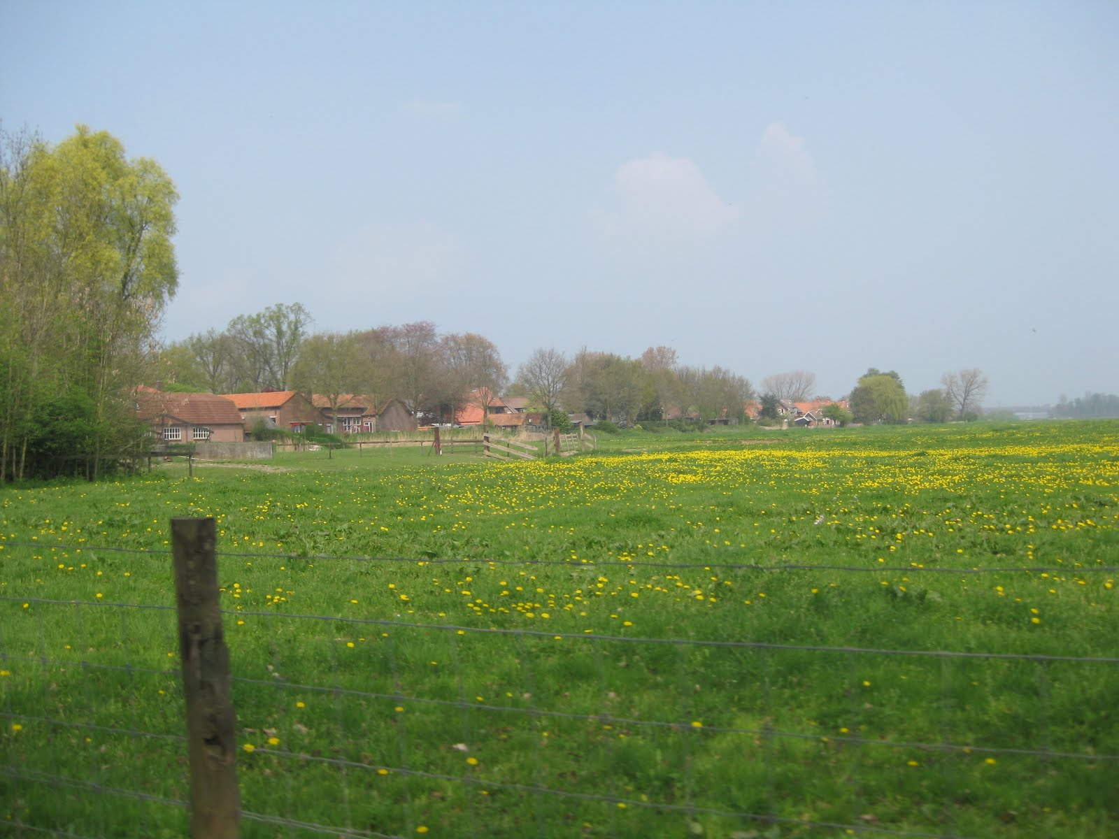 Countryside The Netherlands