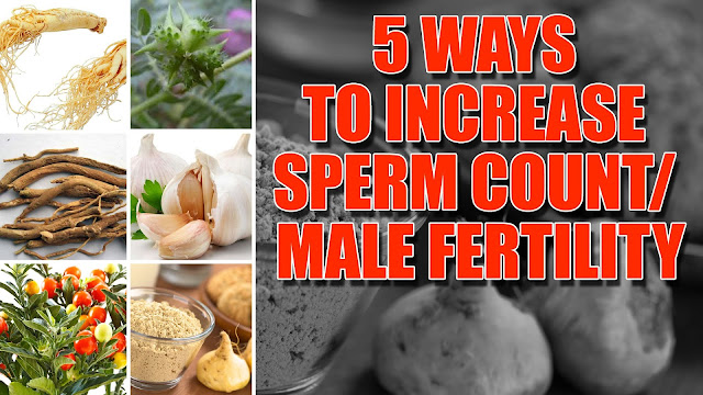 Do THIS to Increase Sperm Count and Boost Male Fertility Fast!