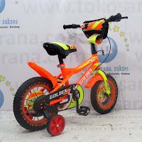12 golden storm bmx sepeda anak