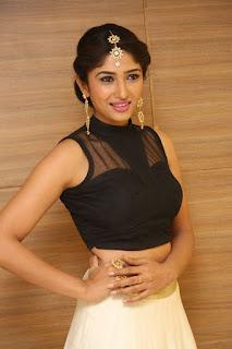 Roshini Prakash Navel Show Navel Queens