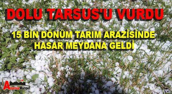 Anamur Haber, Mersin Haber, TARSUS HABER,