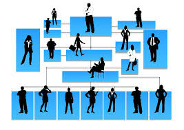 sistemas de negocios
