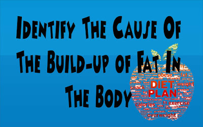 identify the cause of the build up of fat in the body
