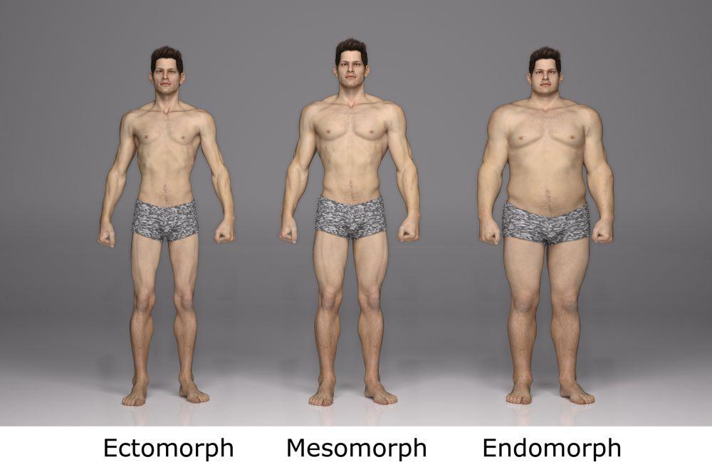dieta e allenamento mesomorfo