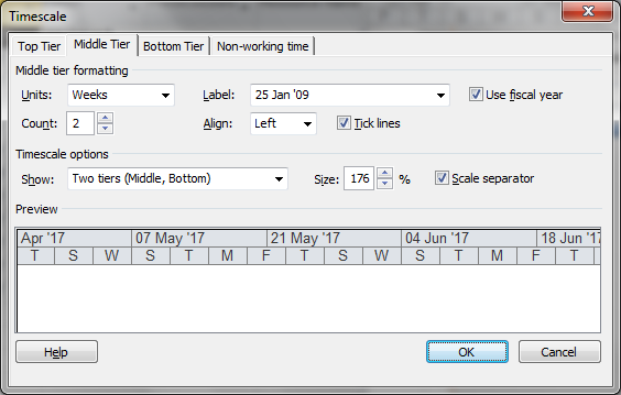 MS Project Timescale