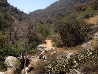 Heading south toward Old Cheezer Mine on Fish Canyon Trial, Angeles National Forest