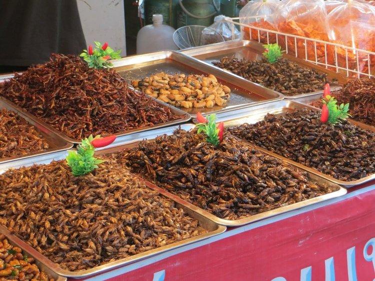 жареный насекомые Таиланд