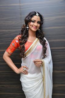 Shilpi Sharma At Kotikokkadu Audio Launch (12).JPG
