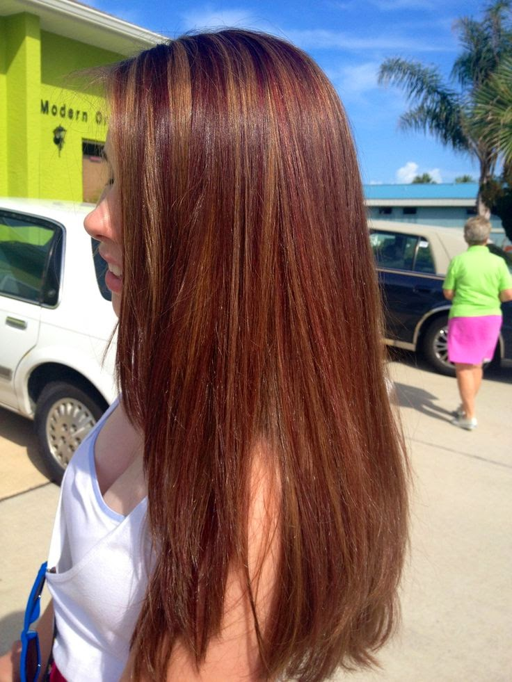 Honey Brown Hair Color With Golden Highlights Hair Color