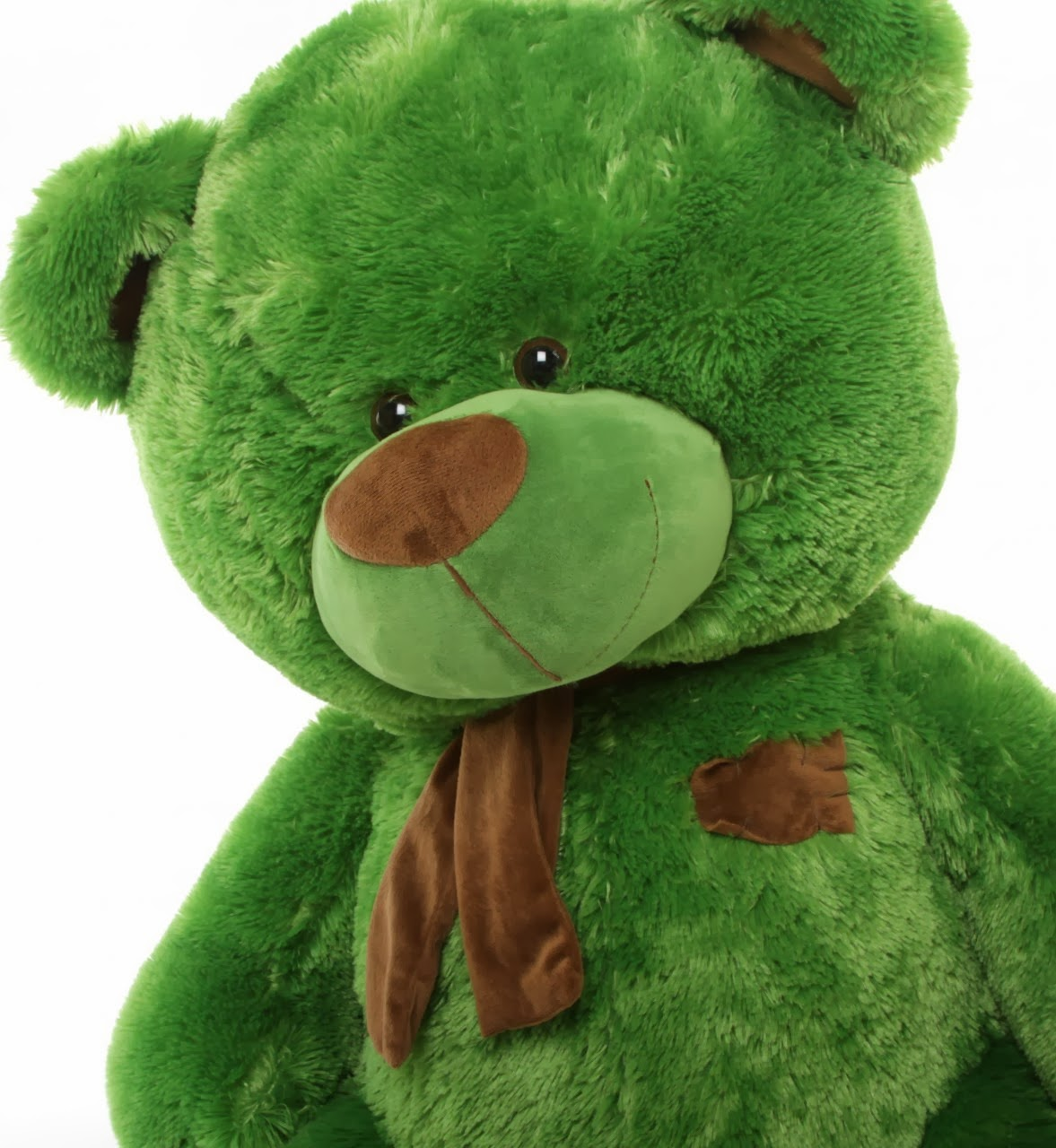 Meet Willy Shags, 45in big green teddy bear