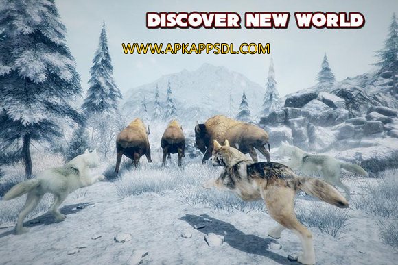 Download Furious Wolf Simulator Apk Mod v1.0 Full Version 2016