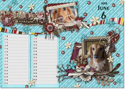 DSB Calendar 6月