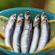 Eating Fish Can Reduce AMD Risk