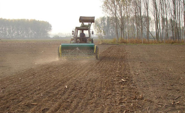 «Μοίραζουν» 670.000 στρεμμάτων δημόσιας γης σε 30.000 αγρότες