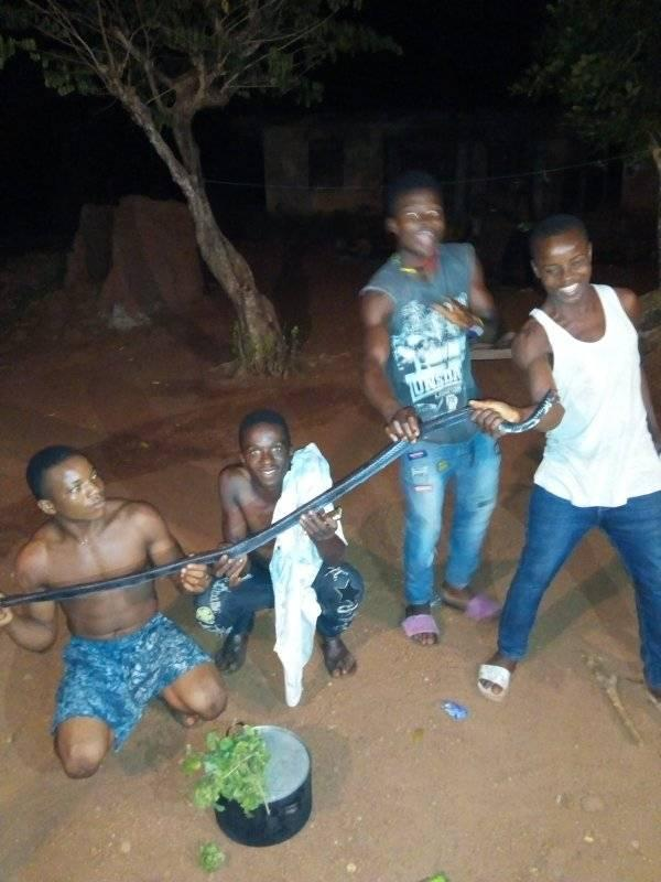 Photos: Man Kills & Cooks Snake That Invaded His House At 12:14am