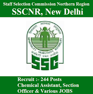 Staff Selection Commission Northern Region, SSCNR, New Delhi, SSC, Staff Selection Commission, Delhi, SSC Delhi, Graduation, Section Officer, freejobalert, Sarkari Naukri, Latest Jobs, Hot Jobs, sscnr logo