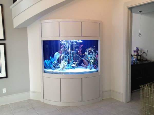 Best Small In Aquariums Interior House
