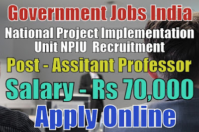 National Project Implementation Unit NPIU Recruitment 2017