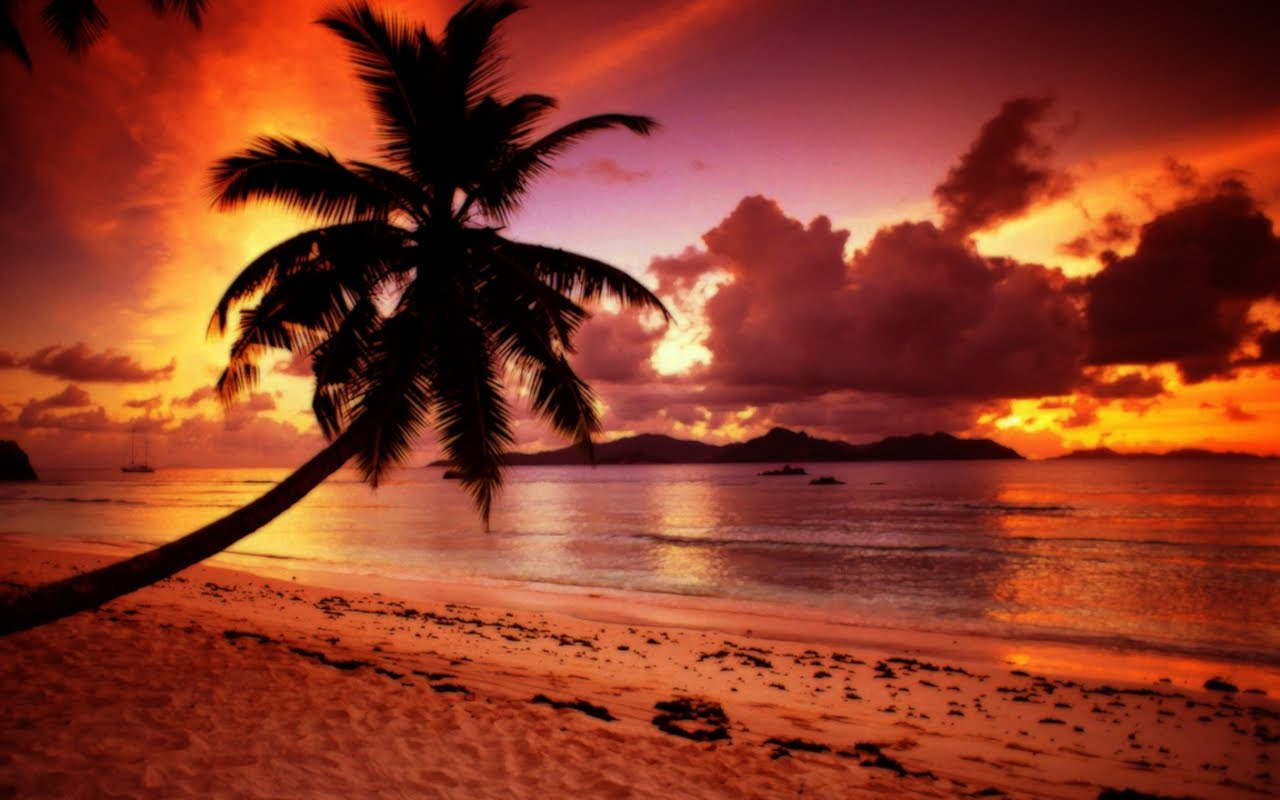Hd Tropical Island Beach Paradise Wallpapers And Backgrounds: World Travel Destinations
