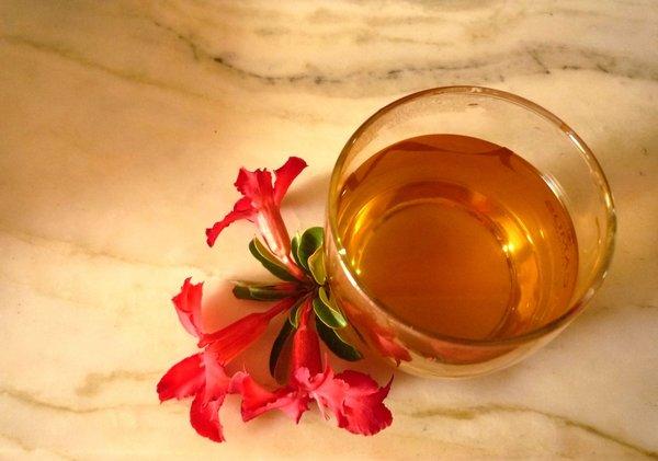 sử dụng các loại trà linh chi