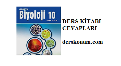10sinif Biyoloji Ders Kitabi Cevaplari Açilim Yayinlari Sayfa 91
