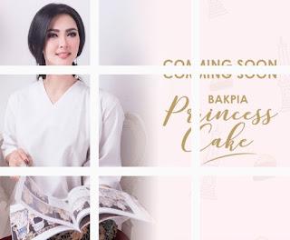 Oleh Oleh Jogja Bakpia Princess Cake Manis Legit Khas Jogja