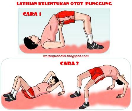 Gambar Kelentukan otot punggung
