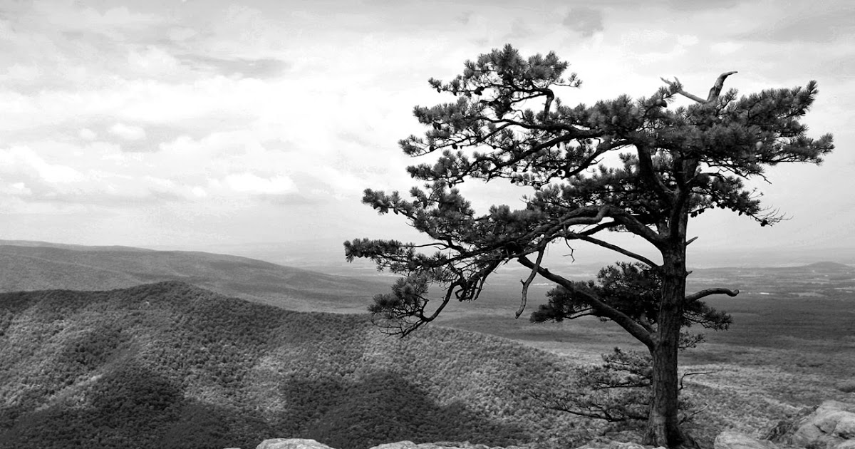 Free Hd Images Fifcu Purchased Blue Ridge Mountains