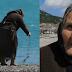 Γιαγιούλα ψάχνει ξύλα για να ζεσταθεί σε παραλία της Ναυπάκτου