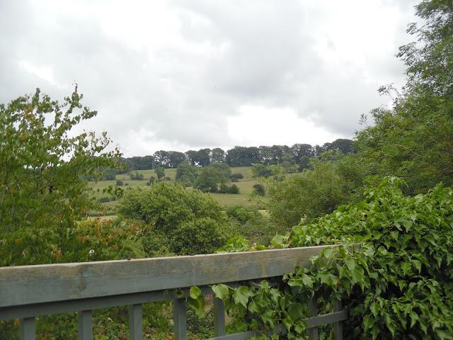 widok na wzgórza Cotswolds