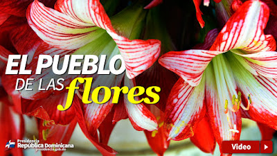 VIDEO: El pueblo de las flores