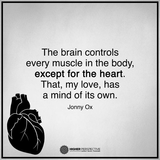 Top 100 Brain Vs Heart Quotes Allquotesideas