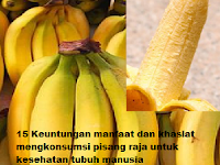 15 Keuntungan manfaat dan khasiat mengkonsumsi pisang raja untuk kesehatan tubuh manusia
