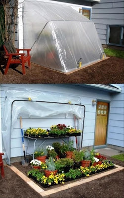 como hacer un invernadero en casa