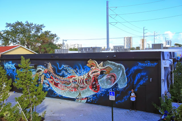 In 2009, PangeaSeed was founded in Tokyo with the goal of being Japan's first and only shark conservation non-profit organization. Today, we will be focusing on of PangeaSeed's street art branch which is curated by Tre Packard.