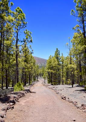 Parco Naturale della Corona Forestal