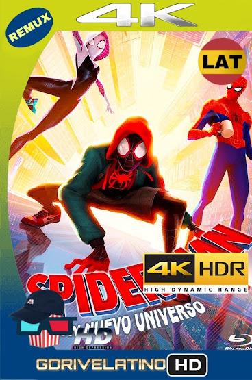 Spider-Man: Un Nuevo Universo (2018) BDRemux 4K HDR Latino-Ingles MKV